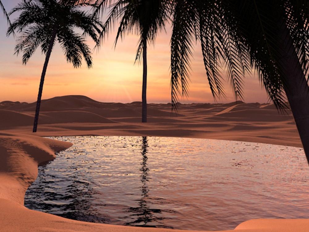 Infinite Dunes Oasis
